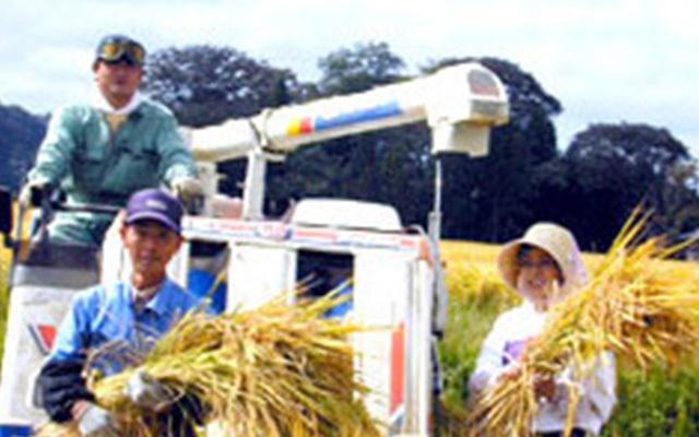 絹子(画面右)と生産者